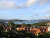 View of Sydney Harbour from Mosman